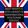 Brexit presents us with a moment of transformational evolutionary potential